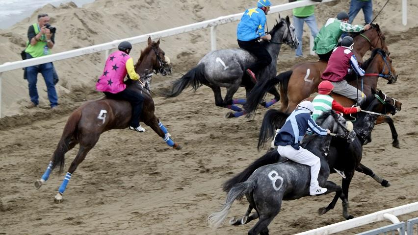 Partenza Palio Costa degli Etruschi cavalli alla mossa